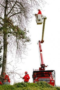 NW-Arbor-Boom-Lift