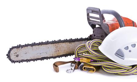 tree surgeon tools