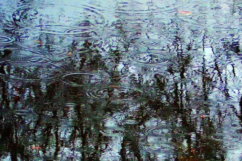 Rainy Portland Weather