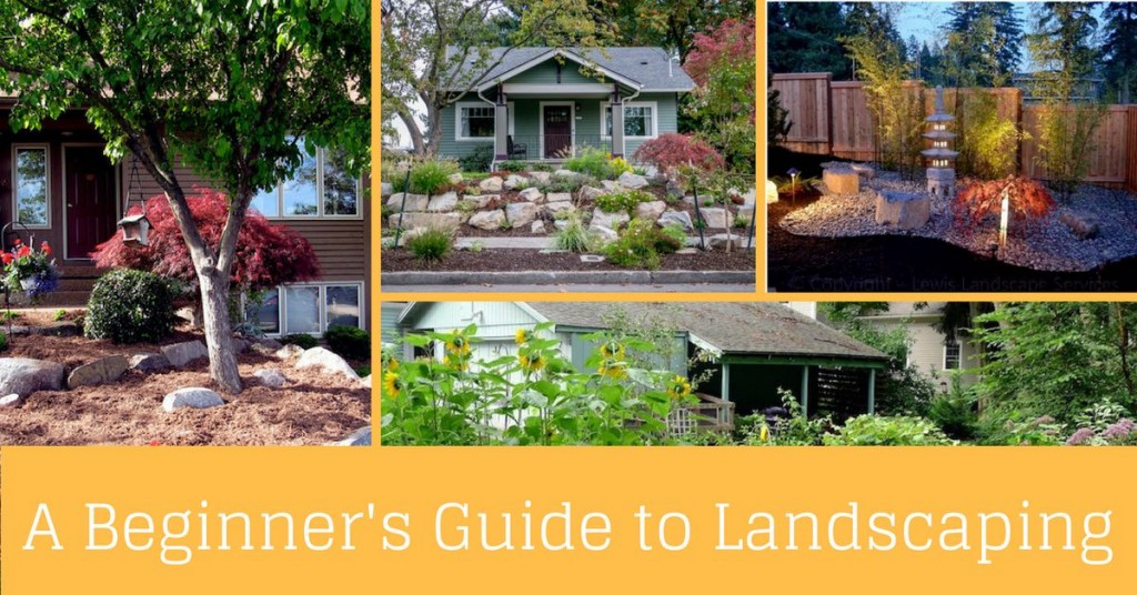 beginners-guide-to-landscaping